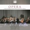 """Don Giovanni, K 527, Act II, Scene 10: """"In quali eccessi, o Numi"""" (Donna Elvira)"""